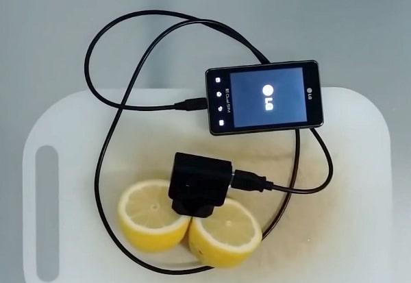 Зарядка телефона от лимонов