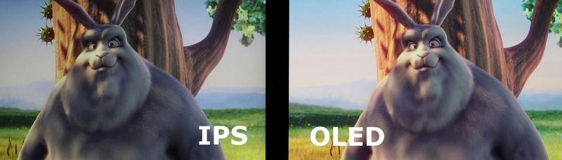 Сравнение OLED и IPS