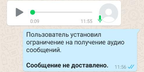 Запретить голосовые сообщения в WhatsApp