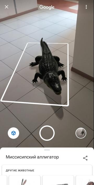 Животные в 3D на смартфоне