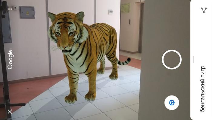 3D-модель тигра на смартфоне