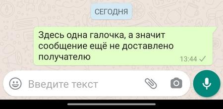 Серые галочки в WhatsApp