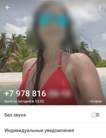 Профиль WhatsApp